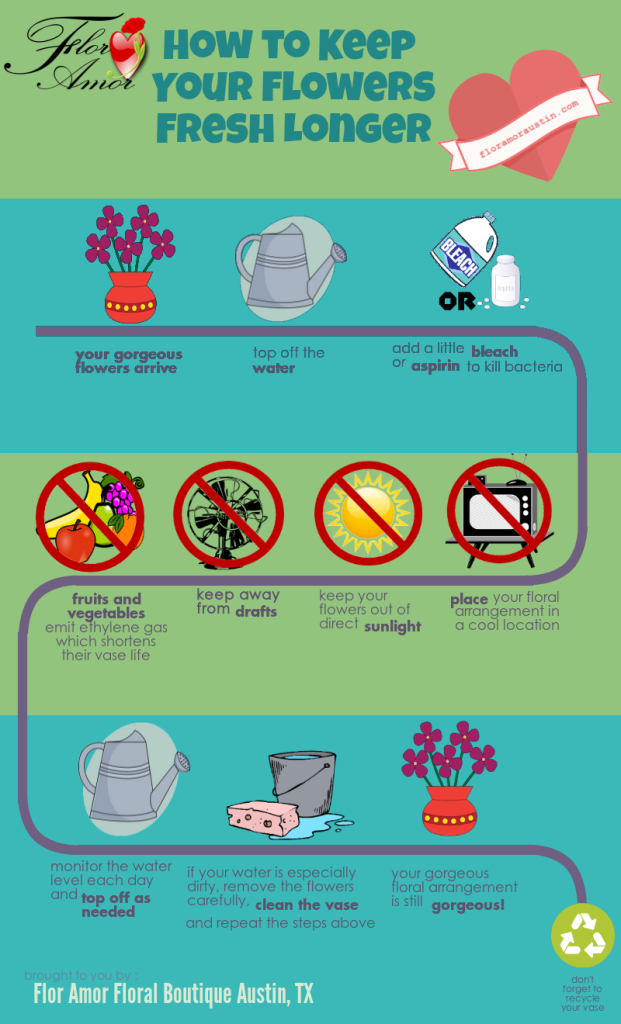 infographic-long-lasting-flowers