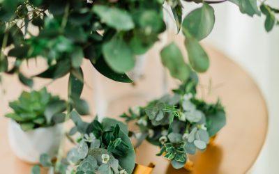 3 Ways to Honor Irish Heritage on Your Wedding Day